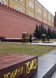 Abdeckung der Ehre am Grab des unbekannten Soldaten Lizenzfreie Stockfotos