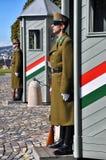 Abdeckungen der Ehre in Budapest, Ungarn lizenzfreie stockfotos