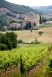 Abdij en wijngaarden, Toscanië, Italië Stock Foto's