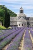 Abdij van Senanque dichtbij het dorp van Gordes met lavendelgebied Stock Fotografie