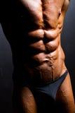 Abdomen del Bodybuilder Imágenes de archivo libres de regalías
