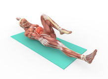 Abdominal. The human body with the abdominal muscles Stock Photo