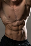 Abdominal Muscles Royalty Free Stock Photo