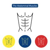 The abdominal muscles fit icon. Perfect abdominal muscles of bodybuilder athletic man torso flat icon vector illustration for apps website media print Royalty Free Stock Photography