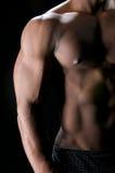 Abdominals y bíceps en sombras Imagenes de archivo
