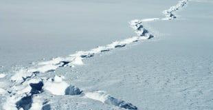 Abdrücke als Pfad auf dem Schnee Lizenzfreie Stockfotos