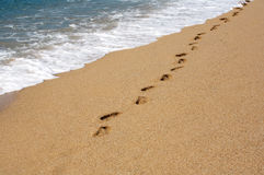 Abdrücke auf dem Sand Stockfoto
