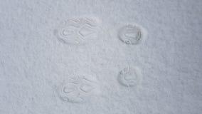 Abdrücke auf dem Schnee lizenzfreie stockfotos