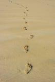 Abdrücke auf dem Strand Stockbilder