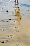 Abdrücke auf dem Strand Stockfotos