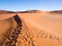 Abdrücke auf dem Weg zu totem Vlei auf der Namibischen Wüste Stockfoto