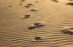 Abdrücke auf einem Sand Lizenzfreies Stockfoto
