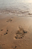 Abdrücke auf Sand Stockbild