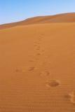 Abdrücke auf Sand Lizenzfreies Stockbild