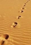 Abdrücke auf Sand Lizenzfreies Stockfoto
