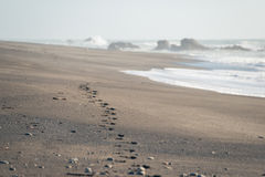 Abdrücke auf Sand am Strand lizenzfreies stockbild