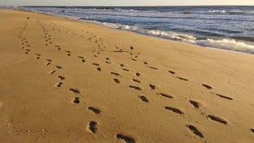 Abdrücke auf sandigem Strand Stockbild