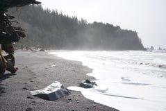 Abdrücke auf Strand im Nebel Stockbild
