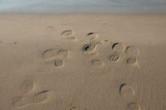 Abdrücke auf Strandsand Lizenzfreies Stockbild
