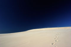 Abdrücke auf Wüste Stockfotos