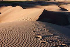 Abdrücke in den Sanddünen Stockfotos