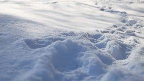 Abdrücke der menschlichen Natur im Schneewinter gestalten Weg viel Schnee landschaftlich Lizenzfreies Stockbild