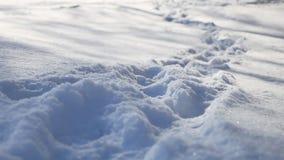 Abdrücke der menschlichen Natur im Schneewinter gestalten Weg viel Schnee landschaftlich Stockbild