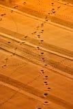 Abdrücke im Sand Stockfoto