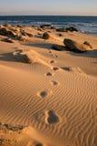 Abdrücke im Sand stockfotografie