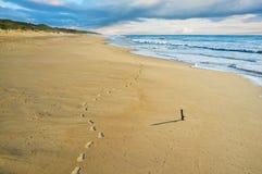 Abdrücke im Sand auf dem 90-Meilen-Strand Lizenzfreies Stockfoto