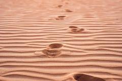 Abdrücke im Sand in der roten Wüste bei Sonnenaufgang Lizenzfreie Stockfotografie