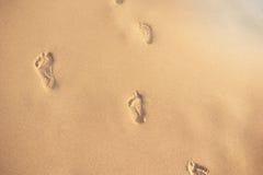 Abdrücke im Sand Menschliche Abdrücke, die weg von dem Zuschauer führen Eine Reihe von Abdrücken im Sand auf einem Strand im summ Lizenzfreies Stockfoto