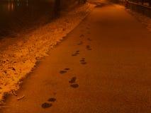 Abdrücke im Schnee lizenzfreie stockbilder