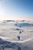 Abdrücke im Schnee Lizenzfreies Stockfoto