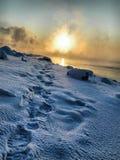 Abdrücke im Schnee Stockfotos