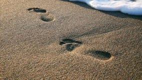 Abdruck auf dem Sand stock video footage