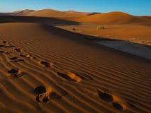 Abdruck auf Sanddüne in der beträchtlichen Wüste Lizenzfreie Stockfotos