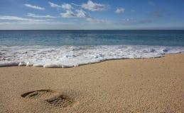 Abdruck auf Sandy Beach mit ankommender Welle stockfotos
