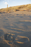 Abdruck auf Strand Lizenzfreies Stockfoto