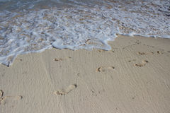 Abdruck auf Strand Lizenzfreies Stockbild