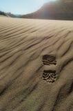 Abdruck auf Wüstensand Stockbild