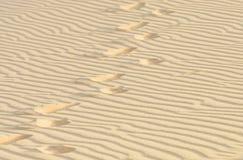 Abdruck in der weißen Sanddüne Stockfotos