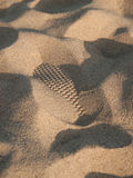 Abdruck im Sand Stockfotografie