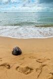 Abdruck im Sand mit der alten Kokosnuss Lizenzfreie Stockbilder
