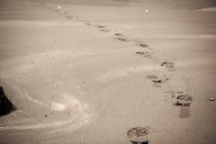 Abdruck im sandigen Strand stockfotos
