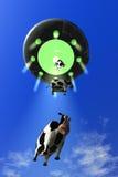 Abducción cómica 3 de la vaca Imágenes de archivo libres de regalías