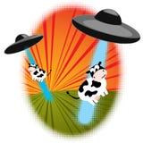 Abducción del ganado Fotografía de archivo libre de regalías