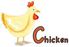 abecadła zwierzęcy c kurczak Fotografia Royalty Free