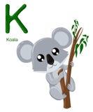 Abecadło dla dzieci Śliczny zoo abecadło z kreskówek zwierzętami odizolowywającymi na białej K koali Obrazy Stock