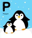 Abecadło dla dzieci Śliczny zoo abecadło z kreskówek zwierzętami odizolowywającymi na białym P pingwinie Zdjęcia Stock